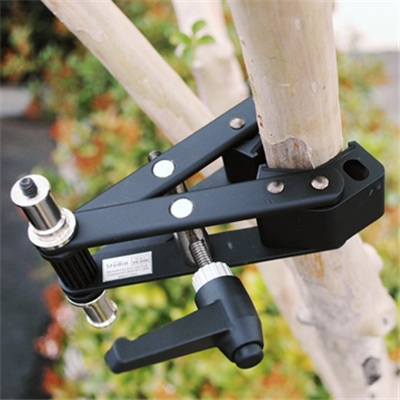 Photo Mounting Clamp