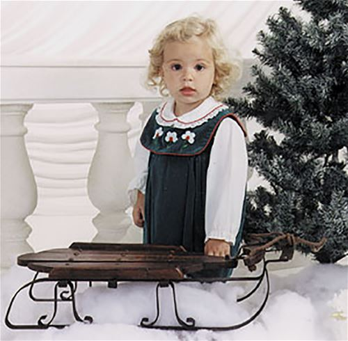 Antique Sled for Decorations