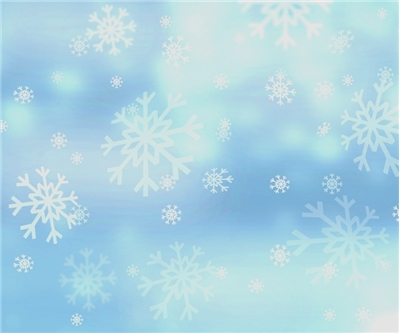 Holiday Snowflake Photo Background